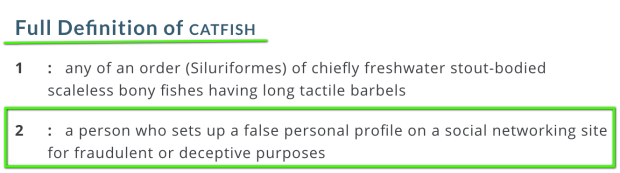 Catfish Definition