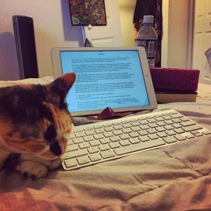 My cat can't read, she prefers pets versus blog post from me.